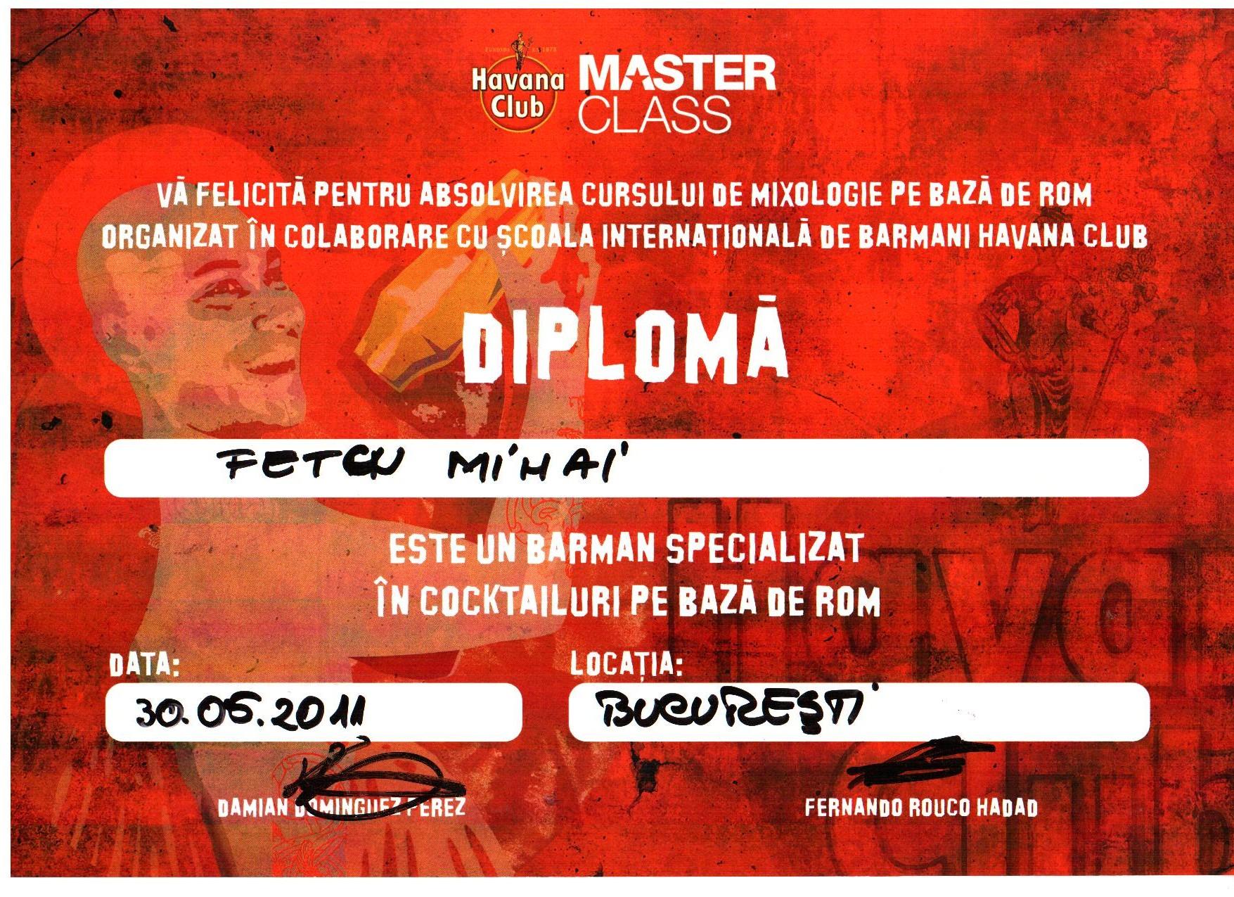 D_diploma mai 2011